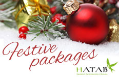 Festive Packages